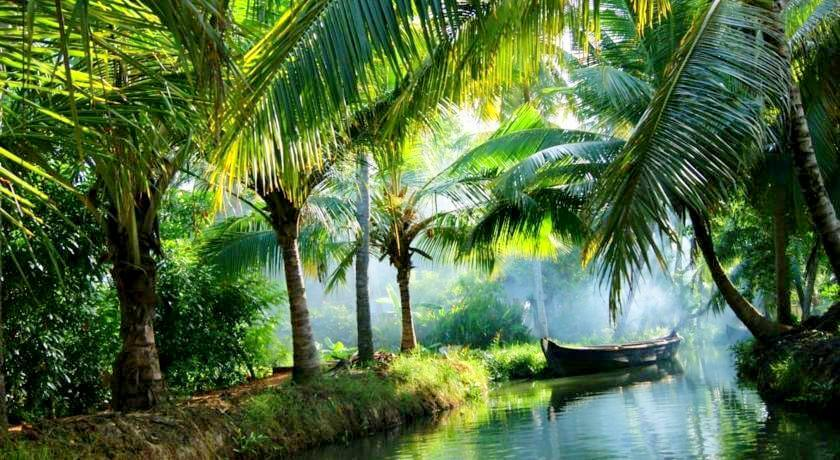 Find a new world in Kochi Kerala